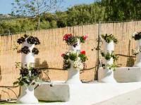 Qué regalar a los apasionados de las plantas